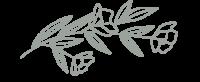 Fleur-minichou